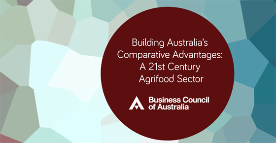 Building Australia S Comparative Advantages